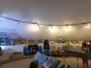 muzeumangalia