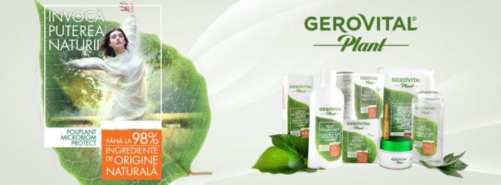Gerovital-Plant-1.jpg